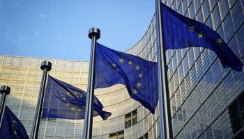 Commission regulation (EU) 2016/1005