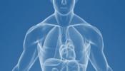 Nghiên cứu khoa học về tác động của amiăng trắng đến sức khỏe con người – Biện pháp quản lý phù hợp